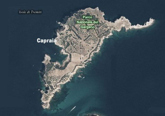 capraia tremiti islands
